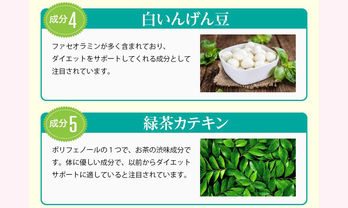 白いんげん豆・緑茶カテキン